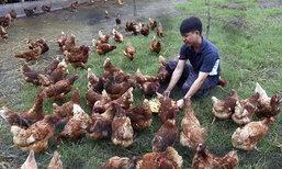 บ้านสวนสานสุข ฟาร์มไก่ไข่อินทรีย์