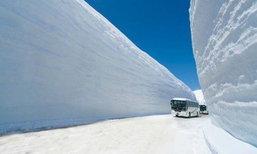 อัปเดต กำแพงหิมะ ญี่ปุ่น 2021 Tateyama-Kurobe Alpine Route ต้องไปสักครั้ง!