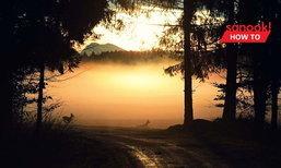 10 วิธีเที่ยวป่าให้เป็นมิตรกับธรรมชาติมากที่สุด