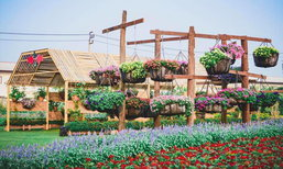 """""""งานความสุขปลูกได้"""" เทศกาลดอกไม้สุดอลังการแห่งนนทบุรี"""
