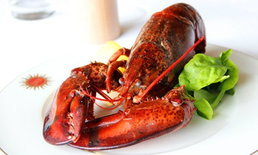ลูเช่ท้าชิมกุ้งล็อบสเตอร์ตัวโต ทานได้ไม่จำกัด  กับโปรโมชั่น Lobster  Love Affair