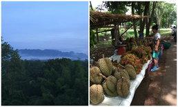 ท่องเที่ยวสไตล์พิศาล เที่ยวทองผาภูมิ : เมืองผลไม้ที่ล้อมรอบด้วยขุนเขา และสายหมอก