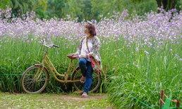 One Day Trip ปราจีนบุรี-นครนายก ชมทุ่งดอกหงอนนาค และวิวทุ่งนา ณ ภูกระเหรี่ยง!!