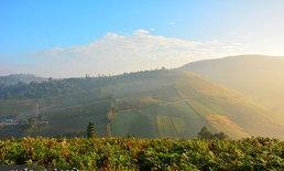เส้นทางแห่งรักขับทะลุเมฆไปกอดดอยสีชมพูที่ภูทับเบิก ภูหินร่องกล้า ภูลมโล เขาค้อ ตอนที่ 2