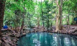 บ่อน้ำผุดปากช่อง มหัศจรรย์บ่อน้ำสีฟ้ากลางป่าใหญ่ ใกล้กรุงเทพ!
