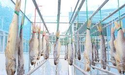 ปลากุเลาเค็มตากใบกิโลละ 1,600 บาท ของฝากสุดพรีเมี่ยมจากนราธิวาส