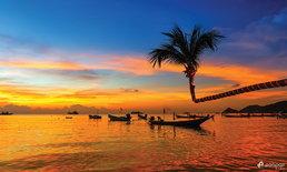 เที่ยวเกาะเต่า ฟินกับสวรรค์ของโลกใต้น้ำ