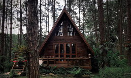 สวนป่าดอยบ่อหลวง นอนบ้านไม้กลางป่าสน ท่ามกลางลมหนาวสุดฟิน