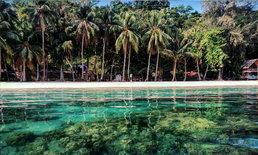 เกาะหวาย พาราไดซ์ นอนเกาะในราคาหลักร้อย แต่วิวระดับล้านที่มีอยู่จริง!