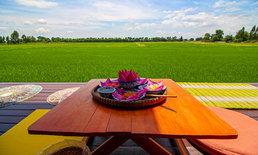 ครัวกางนาสุพรรณบุรี ร้านอาหารบรรยากาศดี มีวิวทุ่งนาเขียวขจีให้ได้ชม
