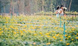 หมู่บ้านดอกไม้บ้านห้วยสำราญ สวรรค์ของคนชอบถ่ายรูป