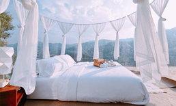 """""""หุบเขาดาวเหนือ"""" นอนพักใต้แสงดาวในที่พักแบบ Bubble หนึ่งเดียวในเชียงใหม่"""