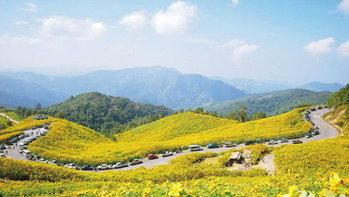 5 เส้นทางขับรถเที่ยวที่สวยที่สุดในเมืองไทย