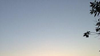ท่องเที่ยวสไตล์พิศาลพาชมทะเลหมอกสุดสวย 1ภู 2 ดอย 3 จังหวัด