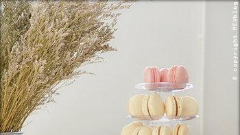 5 อันดับ Macaron แบรนด์ดัง กับรสชาติที่แนะนำให้คุณลิ้มลอง