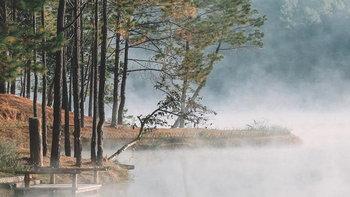 ป่าสนวัดจันทร์ ดินแดนในฝันกลางสายหมอก