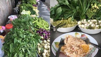 รีวิวร้านขนมจีนที่มีผักให้ทานฟรีคู่กับขนมจีนเยอะที่สุดในประเทศไทย!