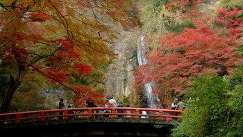 10 พิกัด ใบไม้เปลี่ยนสี โอซาก้า ที่สวยสุดๆ! พร้อมวิธีเดินทาง