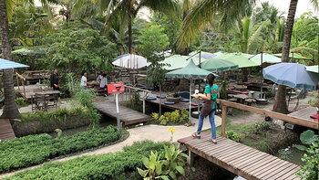 ร้านตาลพวา คาเฟ่นั่งชิลๆในสวนมะพร้าว