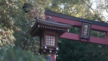 เที่ยวโตเกียวแบบคุ้มๆ งบไม่เกิน 15,000 บาท