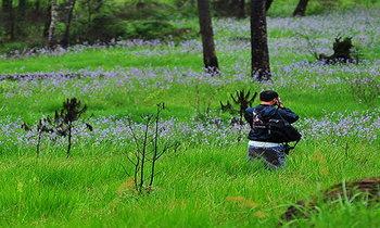 5 สุดยอดสถานที่เที่ยวเดินป่าหน้าฝน