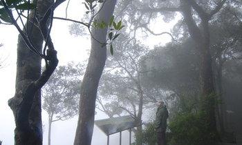 10 ที่เที่ยวหน้าฝน เย็นฉ่ำตลอดฤดู