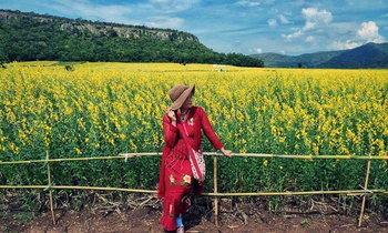 มุมถ่ายรูปสุดฟิน ทุ่งดอกปอเทืองสีทอง จังหวัดนครสวรรค์