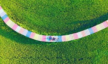 เช็กอิน ตะวันนาคาเฟ่ ชมอันซีนสะพานสายรุ้งพาดผ่านทุ่งนาเขียวขจีสวยงาม