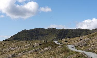 จับเวลาเดินขึ้น Snowdon ยอดเขาที่เตี้ยกว่าภูกระดึง แต่ไปถึงแล้วเหมือนอยู่บนเอเวอเรสต์!