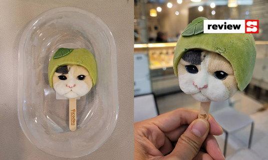 """น้อง! """"ไอศกรีมหน้าแมว หน้าสุนัข"""" เห็นหน้าและแววตา เกือบทำใจกัดไม่ได้"""