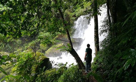 เที่ยวป่าหน้าฝนน้ำตกร่มเกล้าภราดรงดงาม ท่ามกลางธรรมชาติที่สมบูรณ์