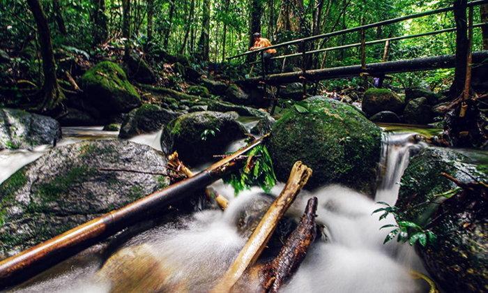 สุคิริน ดินแดนแห่งความสุข สัมผัสวิถีชีวิตชายป่าฮาลาบาลา
