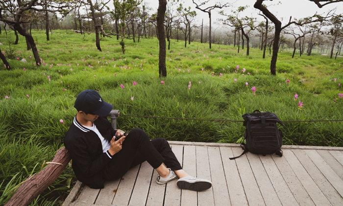 ทุ่งดอกกระเจียวอุทยานแห่งชาติป่าหินงาม ออกดอกเบ่งบานกลางสายหมอก