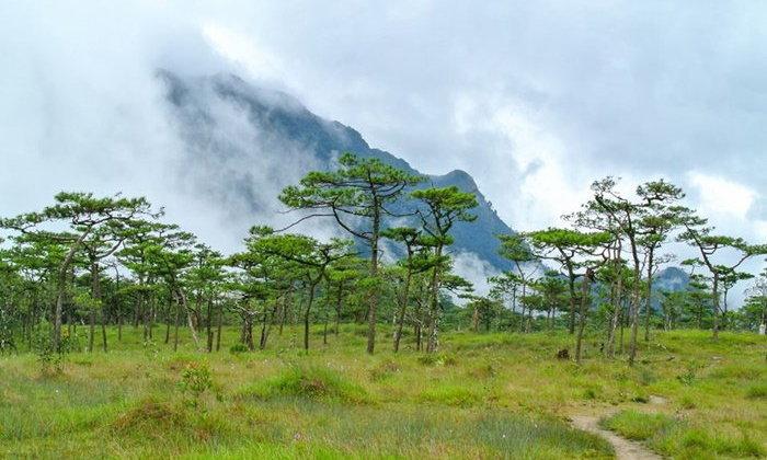 10 เส้นทางเดินป่าสุดฟินในเมืองไทย ลำบากขาแต่สุขใจเมื่อได้เห็นวิว