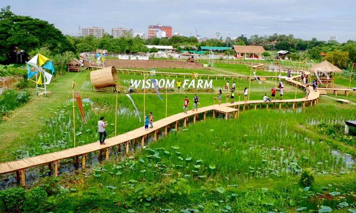 Wisdom Farm คาเฟ่สวยท่ามกลางธรรมชาติ ใกล้กรุงเทพฯ