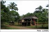 สภาพบ้านในหมู่บ้านทิโพจิ อันเงียบสงบ