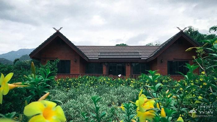 20664845_814882162000305_1281 เที่ยวป่า หน้าฝน ที่ กาญจนบุรี