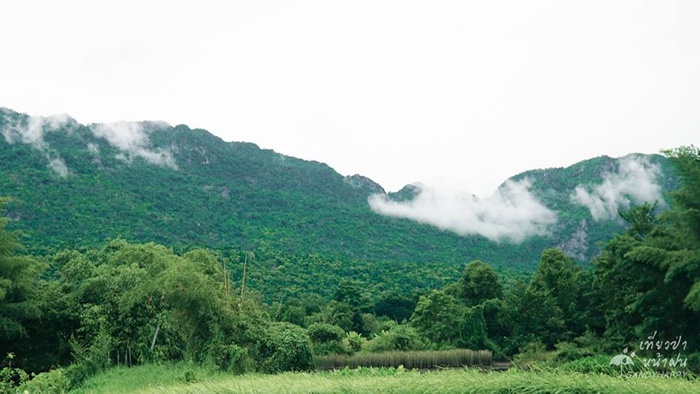 20707989_814882655333589_3136 เที่ยวป่า หน้าฝน ที่ กาญจนบุรี
