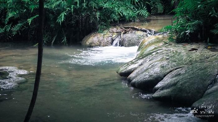 20729274_814882175333637_2813 เที่ยวป่า หน้าฝน ที่ กาญจนบุรี