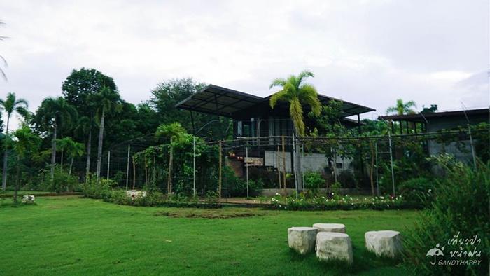 20770028_814882678666920_2660 เที่ยวป่า หน้าฝน ที่ กาญจนบุรี