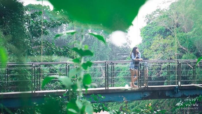 20770463_814882265333628_7826 เที่ยวป่า หน้าฝน ที่ กาญจนบุรี