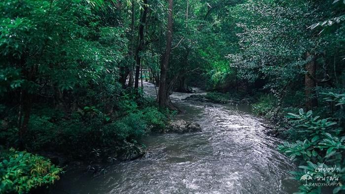 20770465_814882855333569_3106 เที่ยวป่า หน้าฝน ที่ กาญจนบุรี