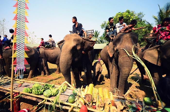 วันช้างไทย