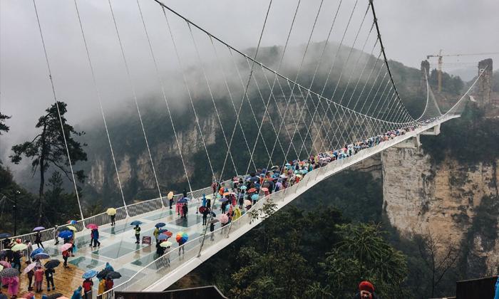 พิชิตสะพานแก้วสูงที่สุดในโลกแห่งจางเจียเจี้ย พิสูจน์ความกล้าของนักเดินทาง!
