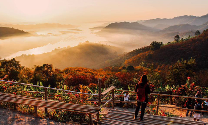 """""""ภูห้วยอีสัน"""" มหัศจรรย์ใบไม้เปลี่ยนสีท่ามกลางแสงสีทองในยามเช้า ไม่ต้องไปไกลถึงญี่ปุ่น!"""