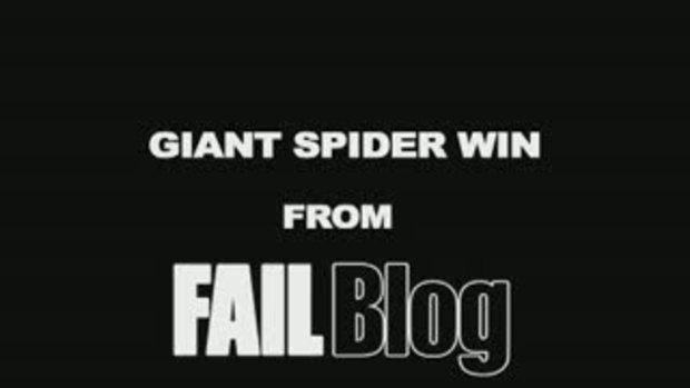 กำลังทำข่าว แมงมุมมาเกาะสะงั้น!