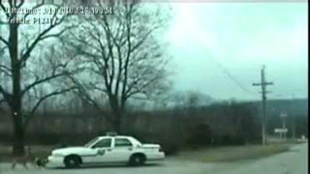 สุนัขโหด ขนาดรถตำรวจยังกล้า!!