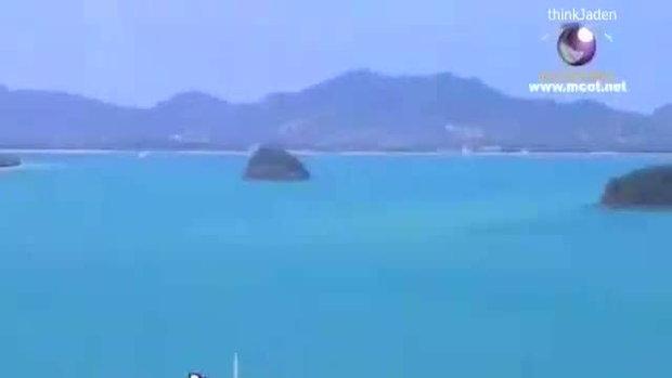 วู้ดดี้เกิดมาคุย : ปลาวาฬ อิสสระ (1)