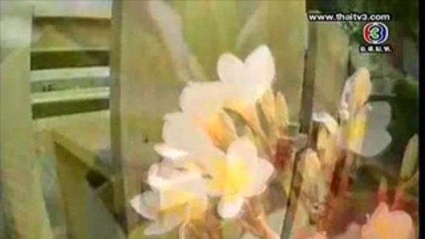 ราตรีสโมสร - เปิดคอนโดสุดหรู...ซูโม่กิ๊ก 3/4