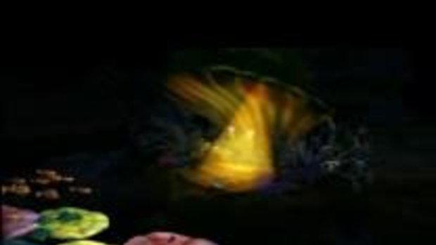 ปลาน้อยหัวใจโต้โตตอนที่ 4